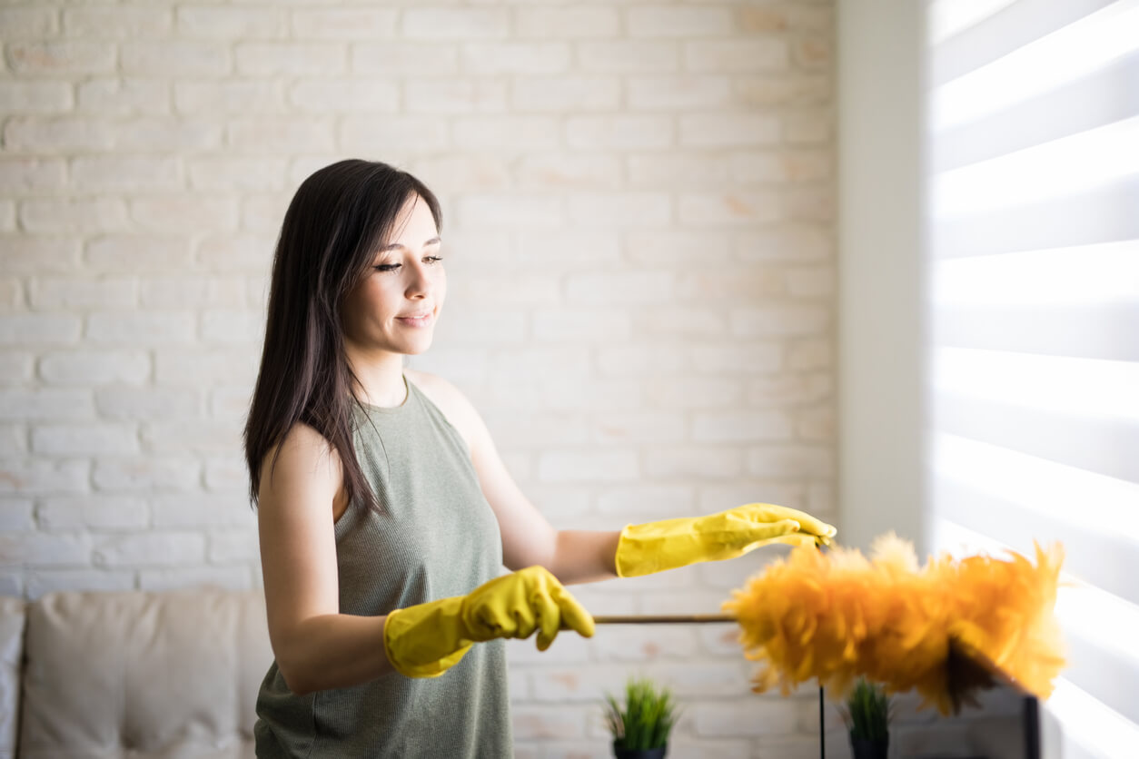 Woman Cleaning Indoors